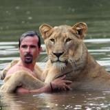 vahşi hayvanlar belgeseli türkçe hd